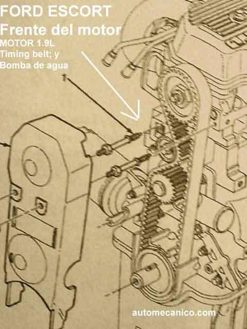 Ford Escort Banda De Tiempo Timing Belt Motor 1 9l